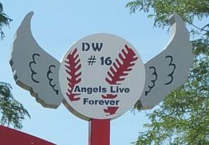 Dylan Williams Angel Wings