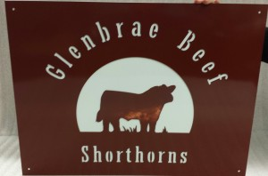 Glenbrae Beef Shorthorns