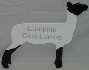 Lumpkin Club Lambs