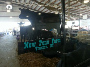 New Penn Farms