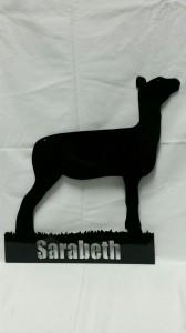 Sarabeth